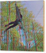 Aerial Artist - Use Red-cyan 3d Glasses Wood Print