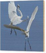Aerial Ballet Wood Print