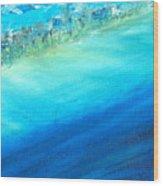 Aerial Coastline Wood Print