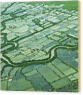 Aerial Shot Wood Print