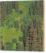 Aerial View Of Forest On Mountainside Wood Print