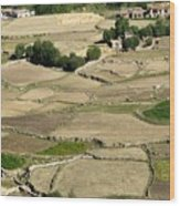 Aerial View Of Green Ladakh Agricultural  Landscape Wood Print