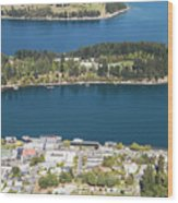 Aerial View Of Queenstown In New Zealand Wood Print