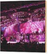 Aerosmith-00005 Wood Print