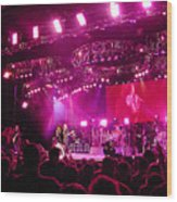 Aerosmith-00194 Wood Print