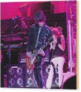 Aerosmith- Joe Perry-00027 Wood Print