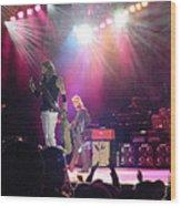 Aerosmith-steven Tyler-00082 Wood Print