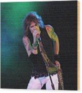 Aerosmith - Steven Tyler -dsc00138 Wood Print