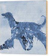 Afghan Hound-blue Wood Print