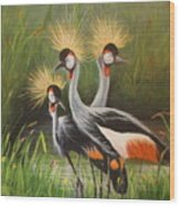 Afrian Crowned Cranes Wood Print