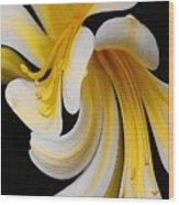 African Amaryllis Gone Awry Wood Print