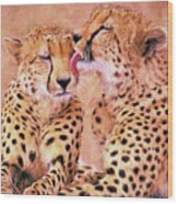African Cheetah's  Wood Print