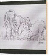 African Elephant Family Wood Print