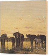 African Elephants Wood Print by Charles Emile de Tournemine