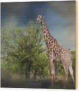 African Giraffe Wood Print