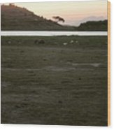 African Lake Wood Print