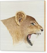 African Lioness Wood Print