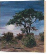 African Moon Wood Print