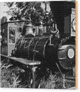 African Rail Wood Print