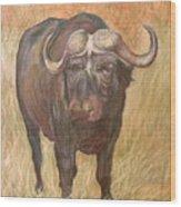 African Sighting Wood Print