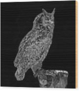 African Spotted Eagle Owl Wood Print