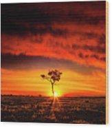 African Sunset Wood Print
