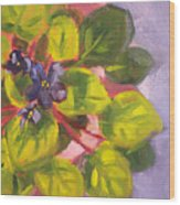African Violet Still Life Oil Painting Wood Print