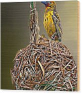 Weaver Nest Wood Print