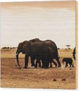 African Wild Elephants Wood Print by Anna Om
