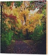 After Fall II Wood Print