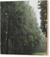 After Rain Wood Print