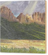 After The Monsoon Organ Mountains Wood Print