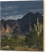 After The Rain In The Superstitions  Wood Print