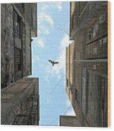 Afternoon Alley Wood Print