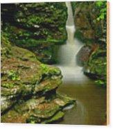 Afternoon At Adams Falls Wood Print