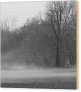 Afternoon Fog Rising Wood Print