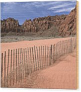 Afternoon In Snow Canyon Wood Print