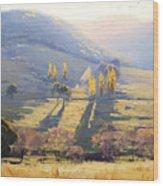 Afternoon Light Tarana  Wood Print by Graham Gercken