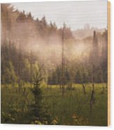 Afternoon Mist Wood Print