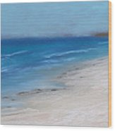 Afternoon On Honeymoon Island  Wood Print