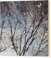 Afternoon Reflection II Wood Print
