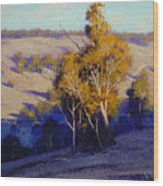 Afternoon Shadows Turon Hills  Nsw Australia Wood Print