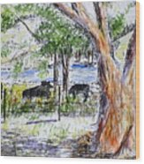 Afternoon Siesta On The Farm Wood Print