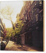 Afternoon Sunlight On A New York City Street Wood Print by Vivienne Gucwa