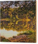 Afternoon View Argyle Lake Illinois Wood Print