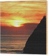 Agate Beach Oregon Wood Print