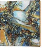Agate Geode Wood Print