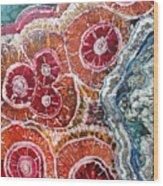 Agate Inspiration - 16a Wood Print