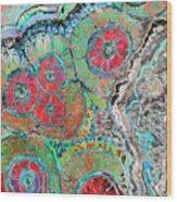 Agate Inspiration - 16b  Wood Print