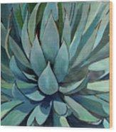 Agave Americana Wood Print